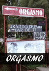 Review of Orgasmo in Baile Tusnad Romania
